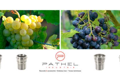 Soyez prêts pour la saison du raisin !